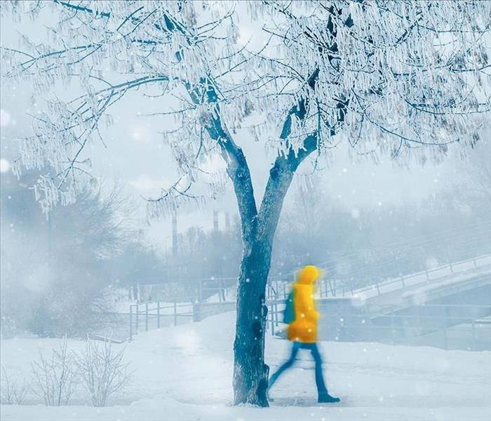 A person in a winter coat is walking through a snow storm